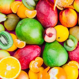 Zbliżenie kiwi; mango; gruszka; owoce pomarańczowe i morelowe