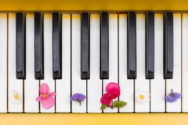 Zbliżenie klawiszy fortepianu z ładnymi jasnymi kwiatami