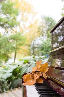 Zbliżenie klawiszy fortepianu z suchymi liśćmi dębu