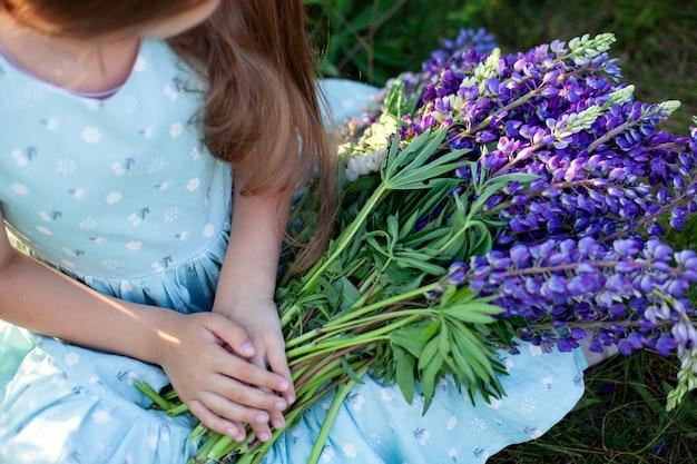 Zbliżenie kobiet ręce trzyma bukiet z polne kwiaty. letnie fioletowe kwiaty. pole łubinu. prowansja mała dziewczynka trzyma duży bukiet łubinów purpurowych w polu kwitnienia. koncepcja natury. teraźniejszość