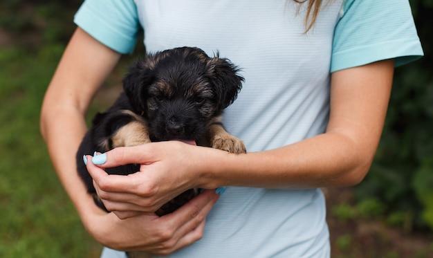 Zbliżenie kobiety trzymającej śmiesznego małego szczeniaka trochę zdrowego psa portret na rękach właściciela