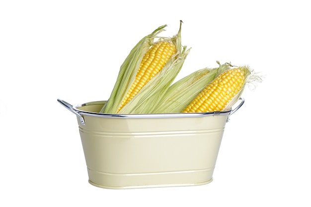 Zbliżenie: kolby kukurydzy świeżych dojrzałych