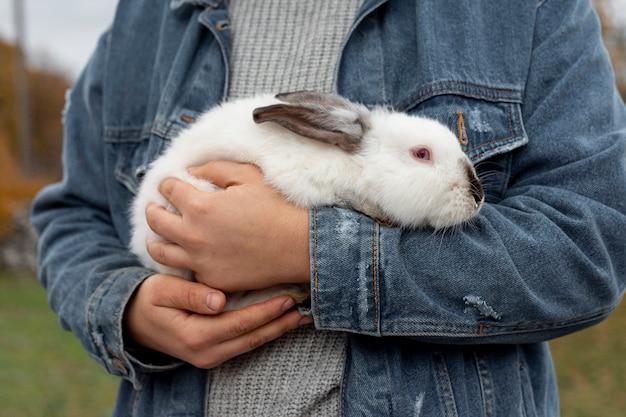 Zbliżenie królik w ramionach właściciela