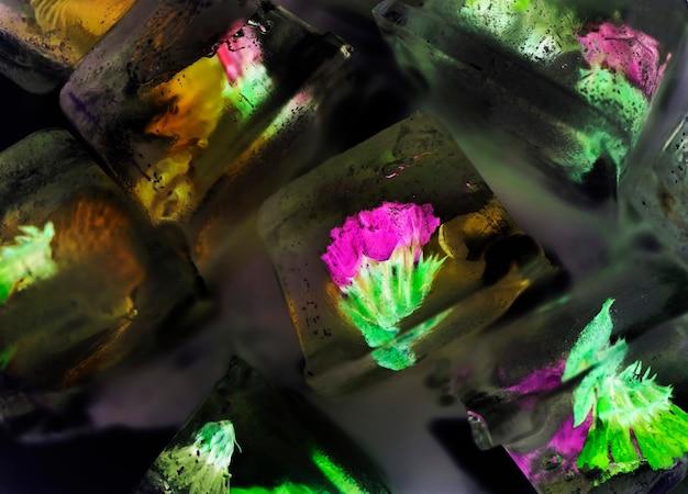 Zbliżenie kwiatów wewnątrz kostek lodu w negatywnym skutku
