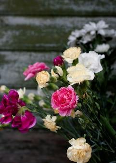 Zbliżenie kwitnących kwiatów