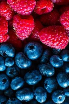 Zbliżenie malin i czarnej jagody podzieliło ramkę. letnie witaminy