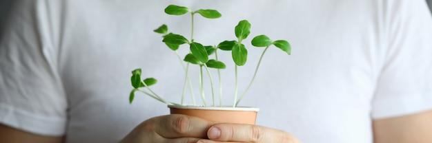 Zbliżenie mężczyzna trzyma szkło porośnięte małe zioła