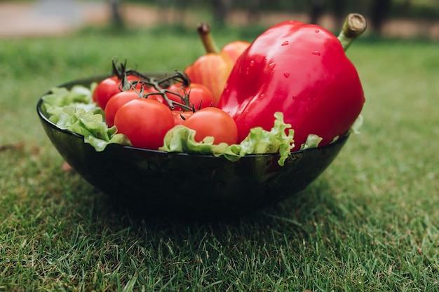 Zbliżenie mokre świeże warzywa leżące na talerzu na trawie. zdrowe czerwone pomidory, smaczna papryka, ogórki i zielona sałata w ogrodzie. pojęcie świeżości i letniego jedzenia.