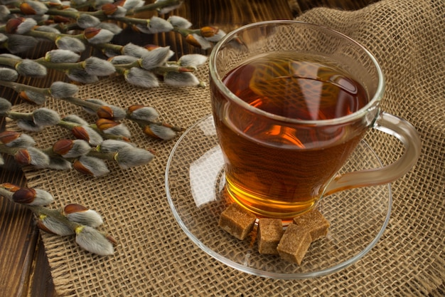 Zbliżenie na herbatę w szklanej filiżance i kwiatach wierzby