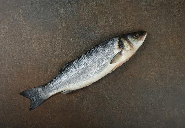 Zbliżenie na jedną świeżą surową europejską rybę okonia morskiego na stole, podwyższony widok z góry, bezpośrednio nad