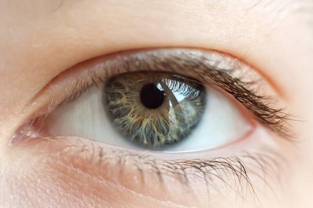 Zbliżenie Na Jedno Oko. Ludzkie Oko. Premium Zdjęcia