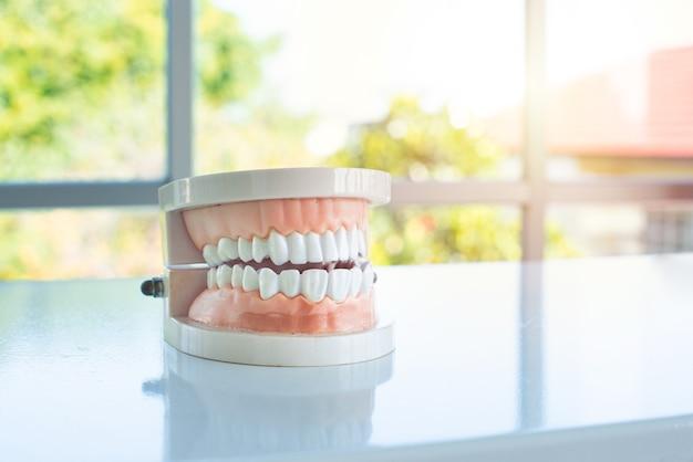 Zbliżenie na makiety dentystycznego mostu kołowego