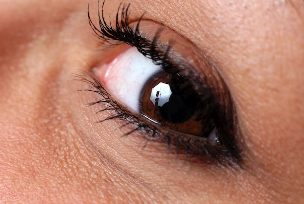 Zbliżenie na naturalne kobiece oko