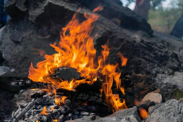 Zbliżenie na ognisko, płonące drewno i pusty grill