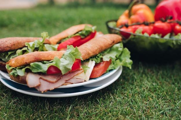 Zbliżenie na pyszne domowe kanapki z sałatką, czerwonymi pomidorami, pokrojonymi wędlinami i chlebem podawanym na talerzu na zielonej letniej trawie.