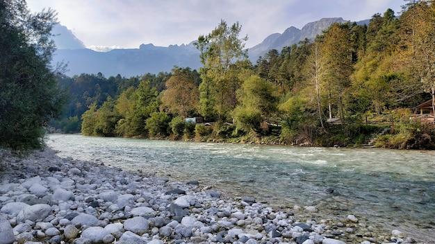 Zbliżenie na rzekę płynącą w jesiennym lesie