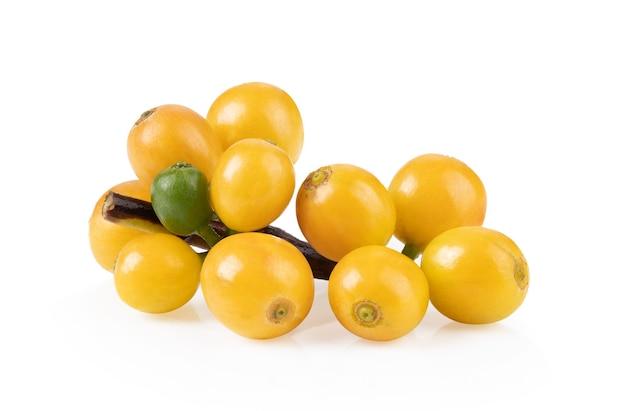 Zbliżenie na świeże żółte ziarna kawy na białym tle