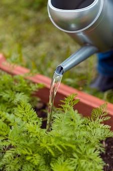 Zbliżenie ogrodnik podlewania zraszaczy