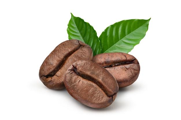 Zbliżenie palone ziarna kawy ze świeżymi liśćmi na białym tle