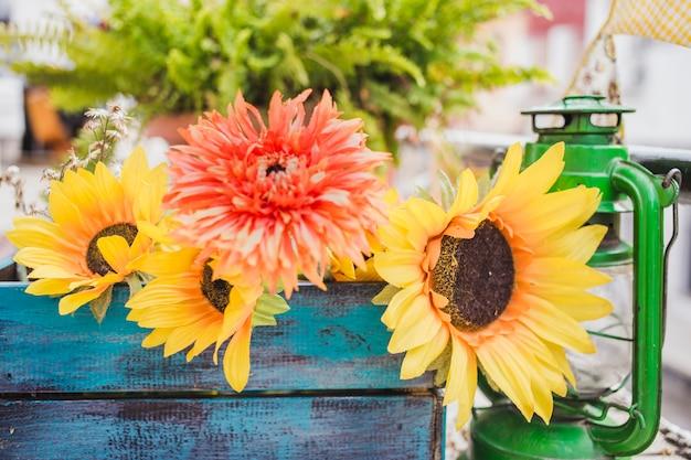 Zbliżenie piękne słoneczniki