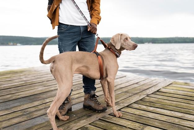Zbliżenie Podróżnika I Uroczego Psa Premium Zdjęcia