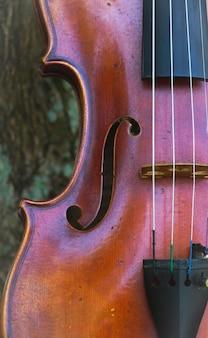 Zbliżenie połowy przedniej strony skrzypiec. pokaż szczegóły instrumentu akustycznego, f-hole i struny, rozmyte światło dookoła