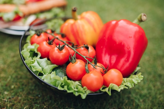 Zbliżenie pysznych kanapek z warzywami. miska zdrowych ekologicznych warzyw na trawie.