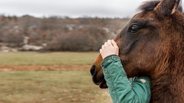 Zbliżenie ręki trzymającej głowę konia