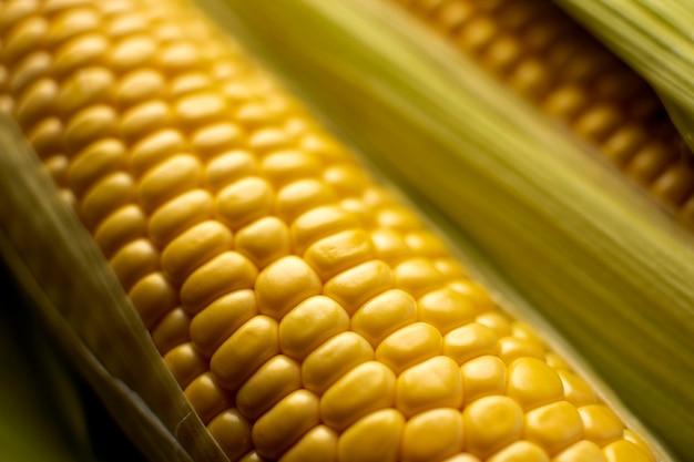 Zbliżenie składu świeżej kukurydzy
