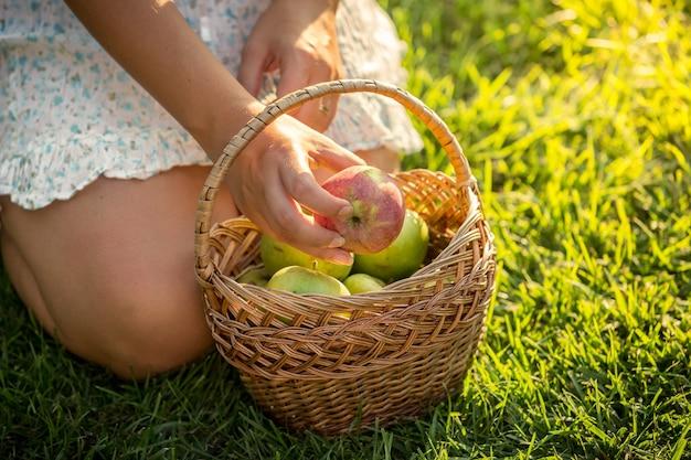 Zbliżenie strzał kobiety z koszem pełnym jabłek siedzącej na trawie