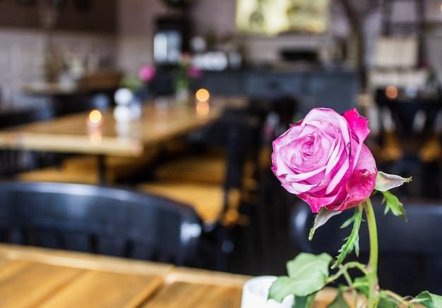 Zbliżenie strzał menchii róża z zamazanymi stołami