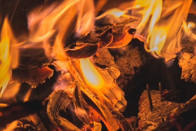 Zbliżenie strzał płonącego drewna i pięknych kolorów ognia