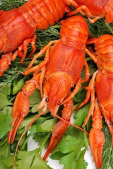Zbliżenie świeżych homarów