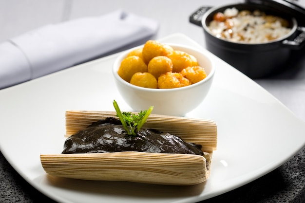 Zbliżenie tamale z typowym mole meksykańskim