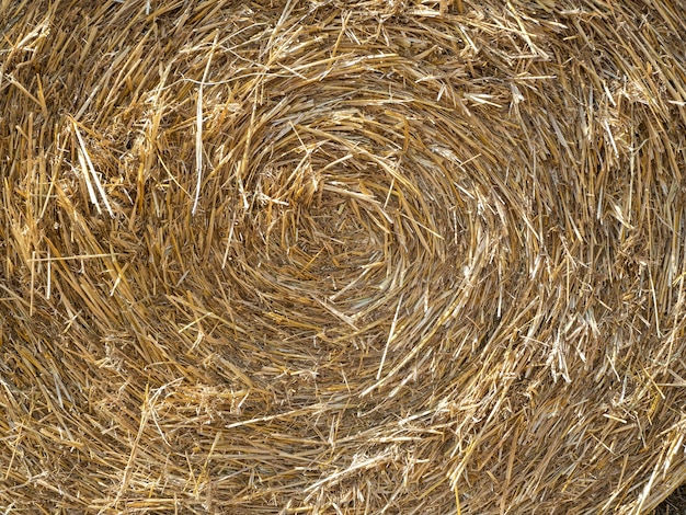 Zbliżenie tekstury słomy. zwinięty w krąg siana. pojęcie rolnictwa