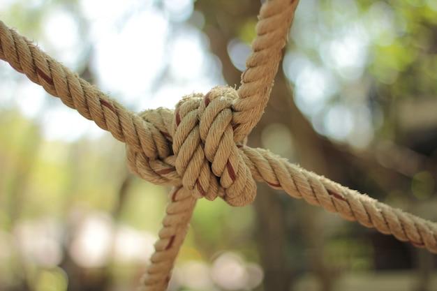 Zbliżenie węzła liny