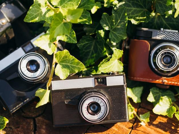 Zbliżenie wielu retro aparatów fotograficznych