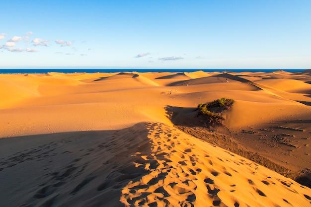 Zbliżenie wydm maspalomas na wyspie gran canaria