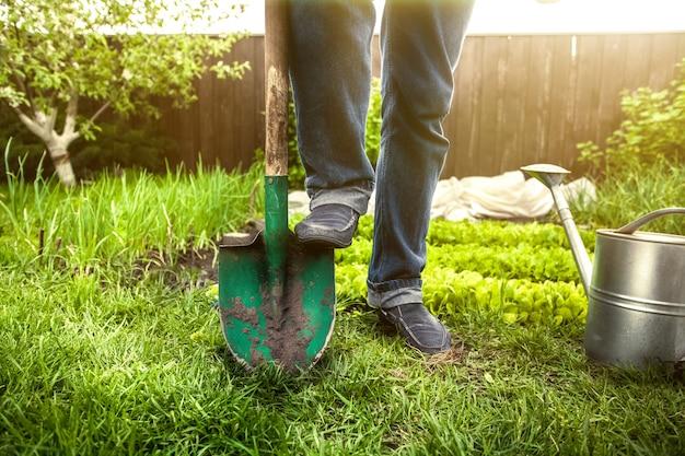 Zbliżenie zdjęcie człowieka trzymającego stopę na łopatę w ogrodzie w słoneczny dzień