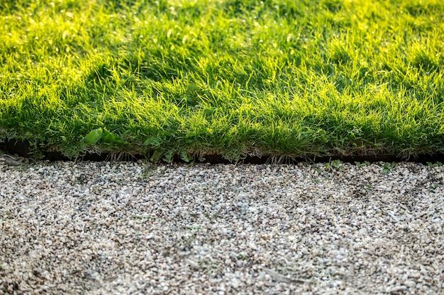 Zbliżenie zdjęcie kamiennej ścieżki i świeżej zielonej trawy w słoneczny dzień