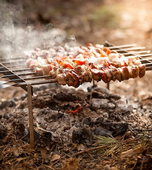 Zbliżenie zdjęcie kebaba w ogniu w lesie