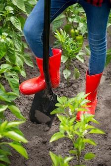 Zbliżenie zdjęcie stóp w czerwonych kaloszach na czarnej metalowej łopacie w ogrodzie
