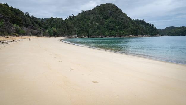 Zdalna tropikalna plaża nakręcona w parku narodowym abel tasman w nowej zelandii