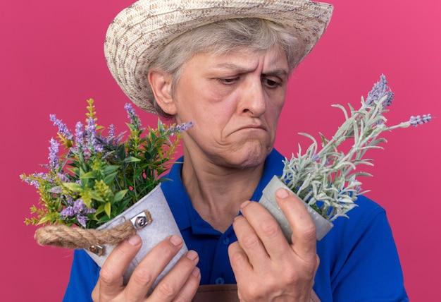 Zdezorientowana starsza kobieta ogrodniczka w kapeluszu ogrodniczym, trzymająca i patrząca na doniczki izolowane na różowej ścianie z miejscem na kopię