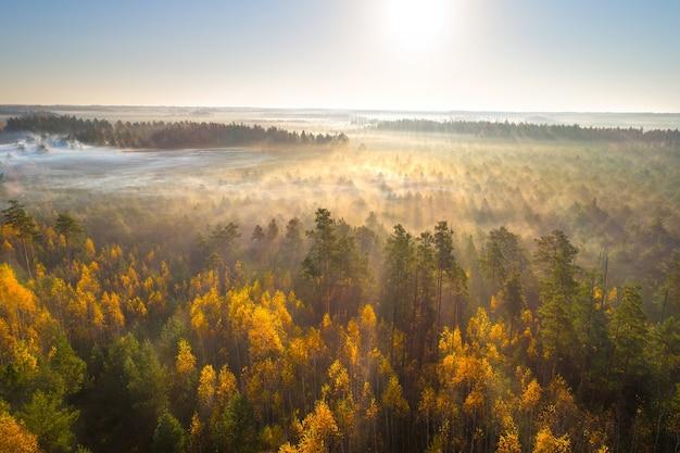 Zdjęcia lotnicze mglisty jesienny poranek na bagnach astravy duleby, białoruś