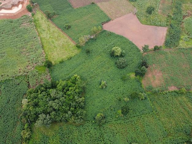 Zdjęcia lotnicze wykonane przez drony ukazują zieleń gruntów rolnych.