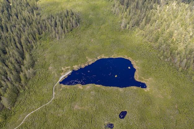 Zdjęcia lotnicze z pięknego jeziora ribnica otoczonego polem pełnym trawy w słowenii