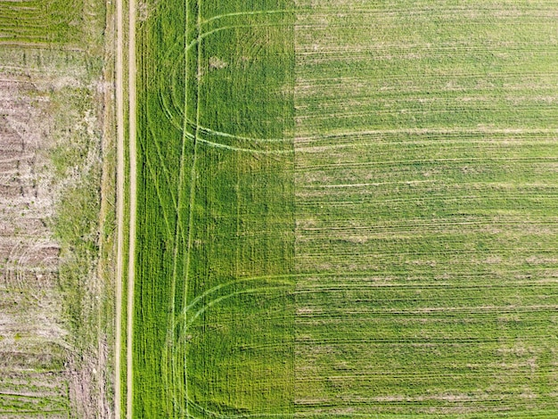Zdjęcia lotnicze z zielonego pola ze śladami kół i wiejską drogą. wiosenny krajobraz rolniczy, pola uprawne, widok z góry. przemysł rolniczy. uprawa roślin ozimych