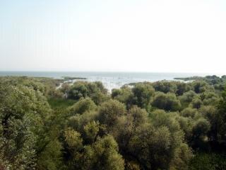 Zdjęcia z turcji, jeziora, indyk