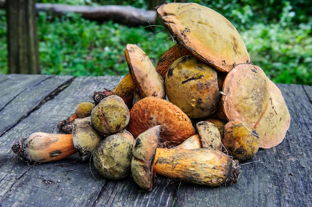 Zdjęcie leśnych grzybów na stole.